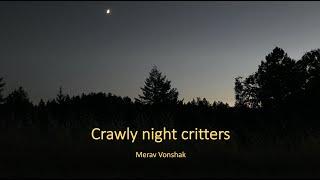Crawly night critters by Merav Vonshak (HD 1080p)