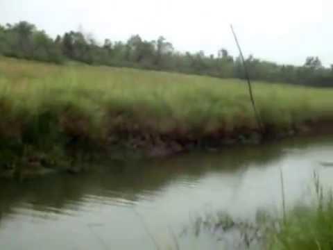 น้องใหม่ฝากเนื้อ ฝากตัวด้วยคนค่ะ^^ สยามฟิชชิ่ง _ Thailand Fishing Community_2