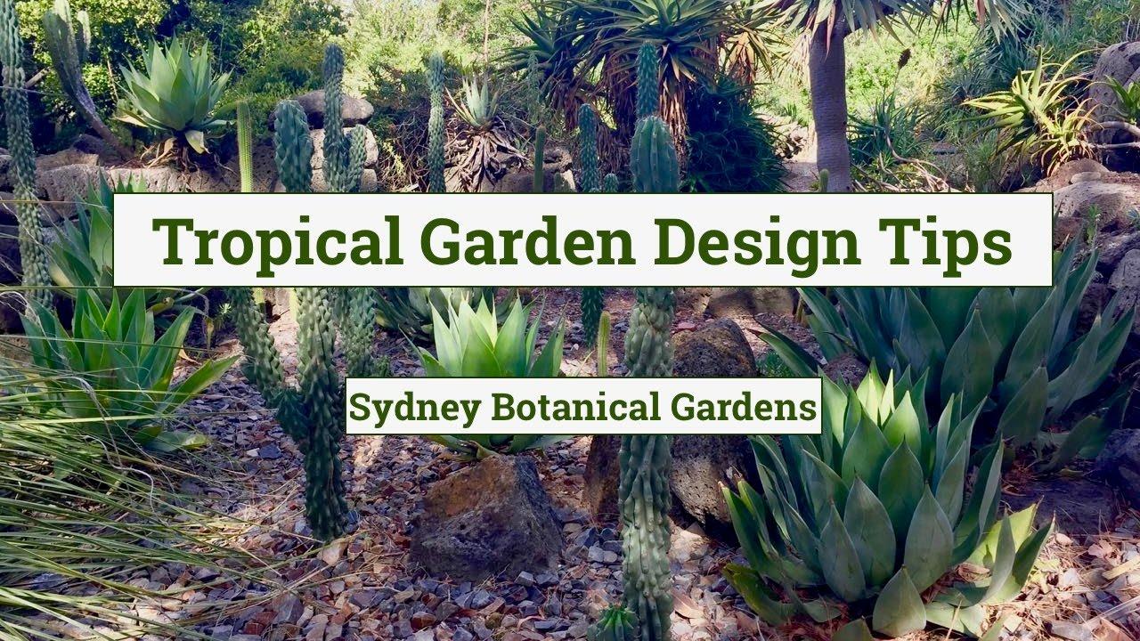 Tropical Garden Design At Sydney Botanical Garden