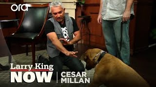 Cesar Millan on How He Became the 'Dog Whisperer' + Tips & Tricks