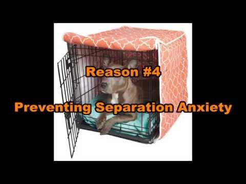 Crate Training Tips & Tricks | K9 Possible Dog Training