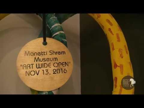 Manetti Shrem Museum's 1st Year Birthday Bash