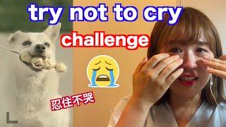 Try Not To Cry Challenge/嘗試不要哭大挑戰/눈물 참기 챌린지