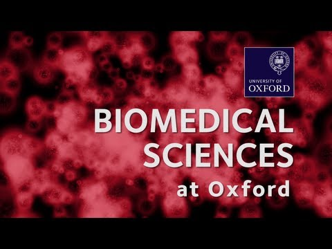 Biomedical Sciences at Oxford University