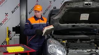 Istruzioni video per il tuo FIAT DOBLO