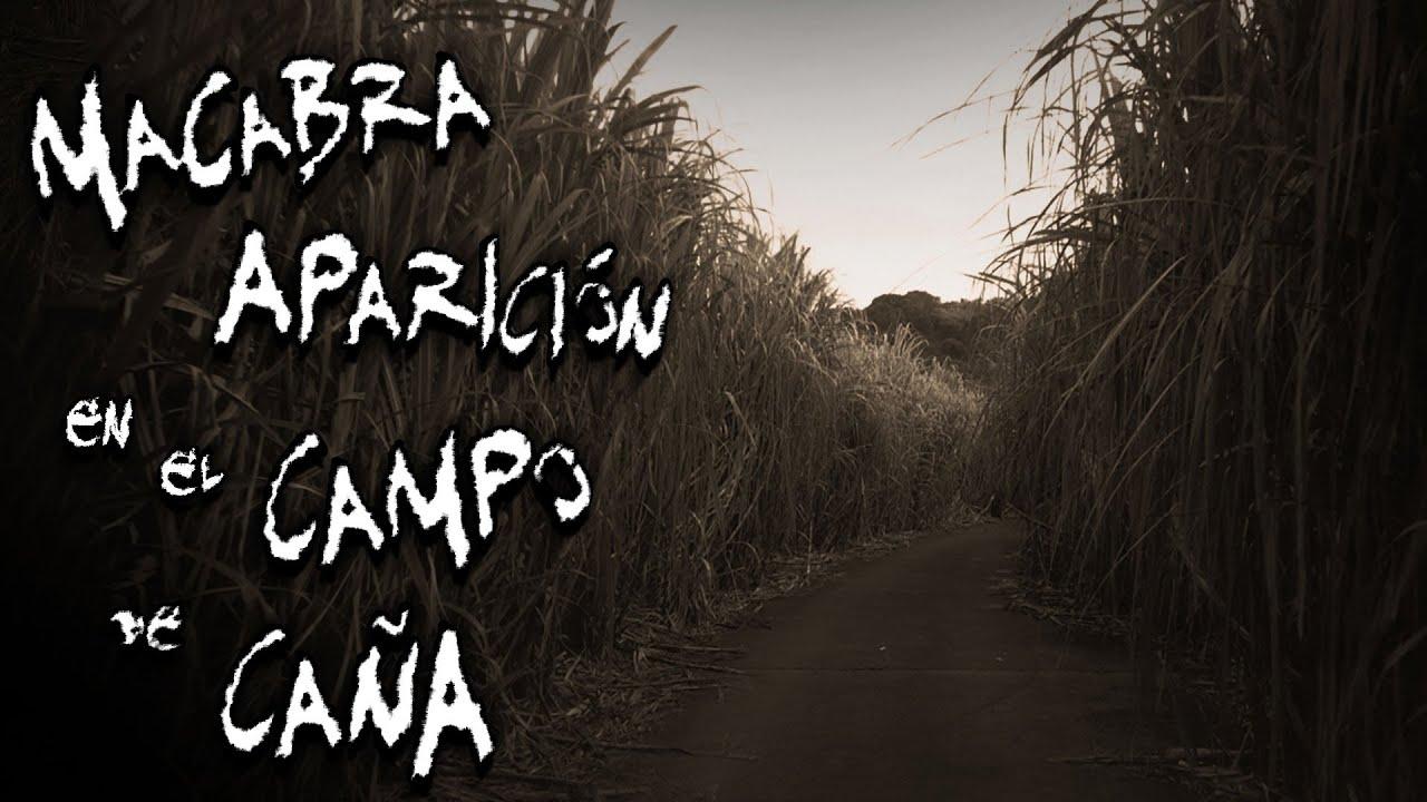 Relato de Terror: Macabra aparición en el campo de caña | Frecuencia Paranormal | FP