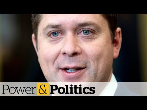 Ex-minister Rejects Scheer's Offer Of Shadow Cabinet Post | Power & Politics