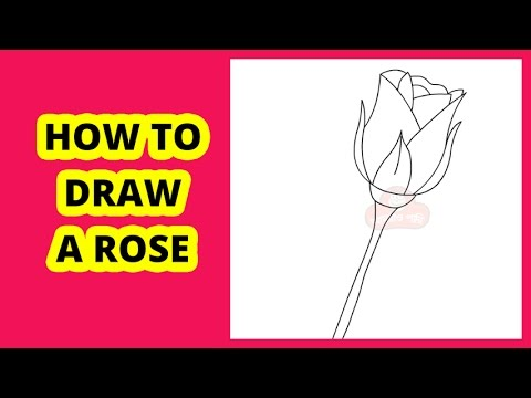 how to draw a rose step by step on youtube