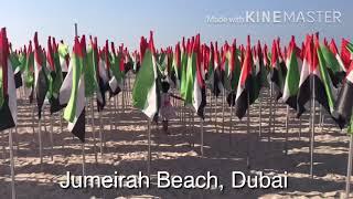 #bisuza @ Jumeirah Beach with UAE flags