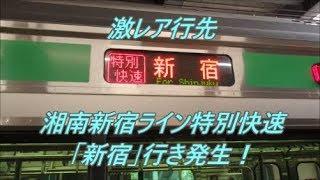 【行先探訪番外編】渋谷駅工事により発生した激レア行先「湘南新宿ライン特別快速新宿行き」乗車記