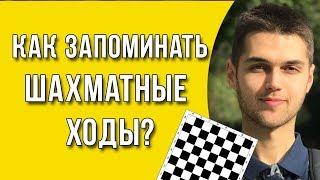 Как запомнить шахматные ходы? / Как выучить шахматы?