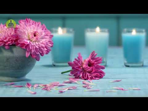 """Heal While You Sleep"" Healing Music For The Body & Soul, Meditation Music, Relaxing Spa Music"
