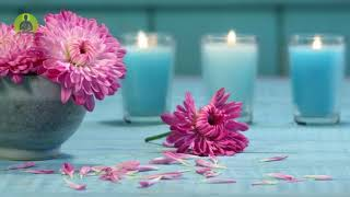 'Heal While You Sleep' Healing Music for The Body & Soul, Meditation Music, Relaxing Spa Music
