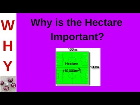 Relevance of the Hectare