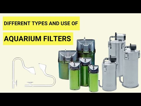 How To Aquarium Filter | Types Of Aquarium Filters | Aquarium Filters For All Aquariums | Best ?