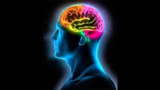 Zikir ve Beyin