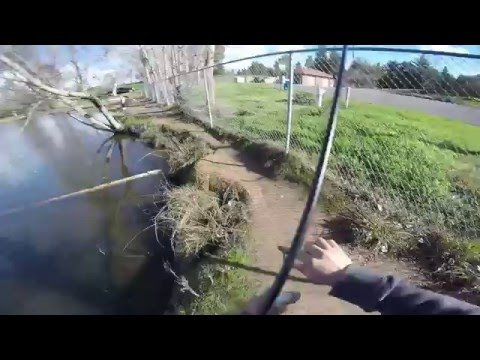 Woodward Park Trout Fishing 2016