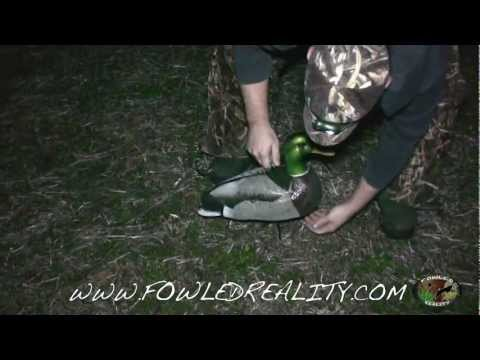 Duck Hunting Smash In Southern Illinois: Fowled Reality