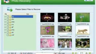 Easy Photo Recovery 2 5