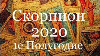 Скорпион. Таро-прогноз на 1-е  Полугодие 2020 Года/Tarot 2020 years/塔罗牌星座