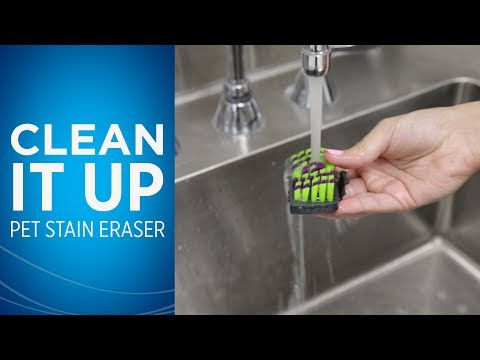 How do I clean my Pet Stain Eraser™ after I use it?