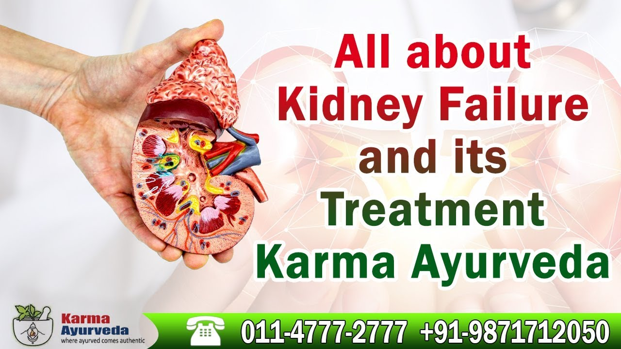 All about kidney failure and its treatment |Karma Ayurveda