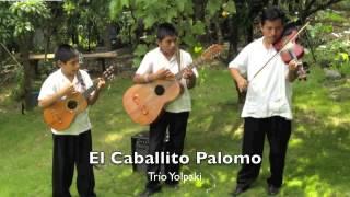 Los Mejores Sones y Huapangos Huastecos - Trio Yolpaki