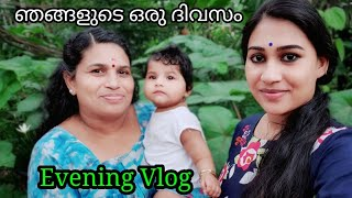A Day ln Our Life Malayalam ||Evening Vlog ||Malayali Makeover