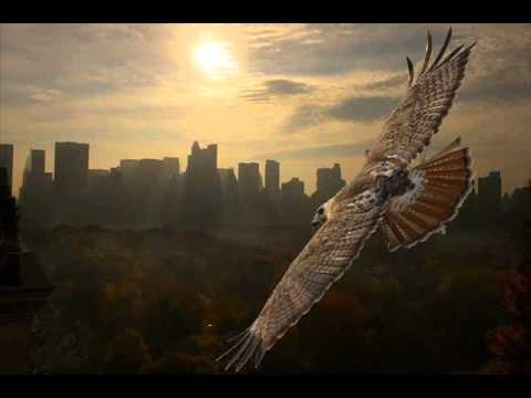 Hawk Medicine - Native American Music , Shamanic Music