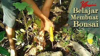 Video Bonsai Hunting Near Pindul Cave, Gunung Kidul Yogyakarta download MP3, 3GP, MP4, WEBM, AVI, FLV Juni 2018