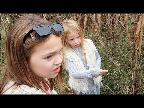 We Lost our Toys in the Corn Maze!