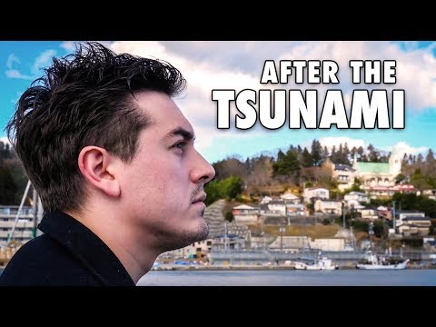 What Happened In Japan After The Tsunami?