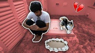 ذبحنا الكلب بالغلط !!! مقلب -  *WE KILLED HER DOG!! *PRANK