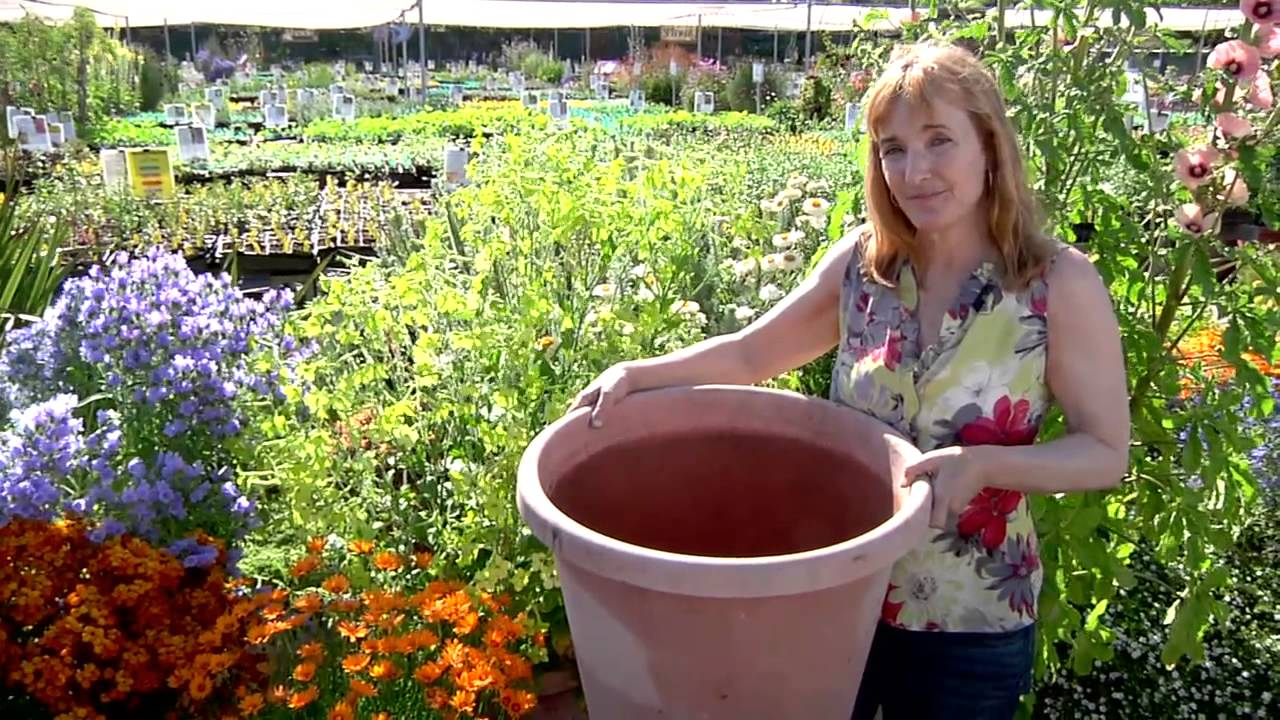 Container Gardening 101!