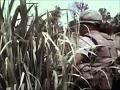 BBC Documentary 2017 - Snipers -  Marine - Full Documentary