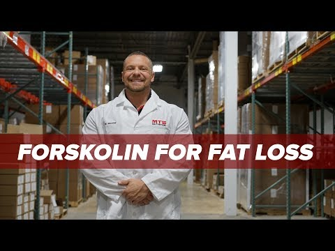 Forskolin For Fat Loss - A Best Kept Secret?