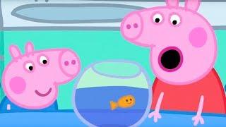 Свинка Пеппа на русском все серии подряд  Пеппа и Аквариум  Мультики