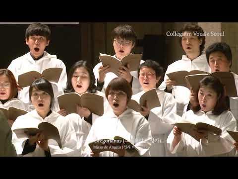 01 Missa de Angelis - Collegium Vocale Seoul 콜레기움 보칼레 서울