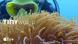 Tiny World - Filming Inside the Reef | Apple TV+