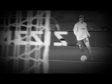 Emil Forsberg -  Conor Mcgregor celebration