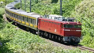 【4k】2019/4/29(Wed) 奥羽本線 E231系配給 EF81-140号機