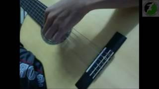 """Cover guitar hay """"Lệ Tình"""""""