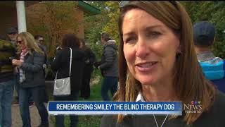 Smiley Statue Unveiling - The Blind St. John Ambulance Therapy Dog