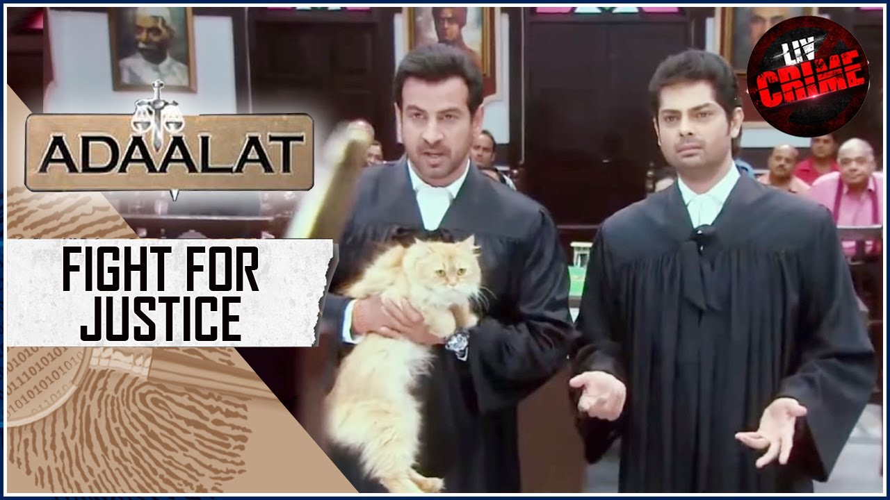 Download Case Of An Ominous Cat   अदालत   Fight For Justice