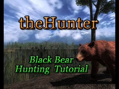 TheHunter - Bear Hunting Tutorial Video **OFFICIAL CONTEST WINNING TUTORIAL** (HD)