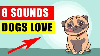 8 Sounds Your Dog Loves