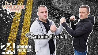 Antonio Plazibat driftao, a Šebalj postao 'kamatar' *strgali kameru* | ZVIJEZDE VRIŠTE | Epizoda 62