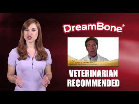 dream-bones---healthy-rawhide-alternative-for-your-dog