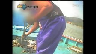 긴급출동 SOS 24 E230 101025 섬에 갇힌 사람들