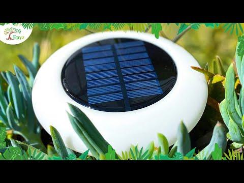 Solar Disk Light | Epyz Solar Lights Outdoor Multicolour Pathway Lights Outdoor Garden Lights
